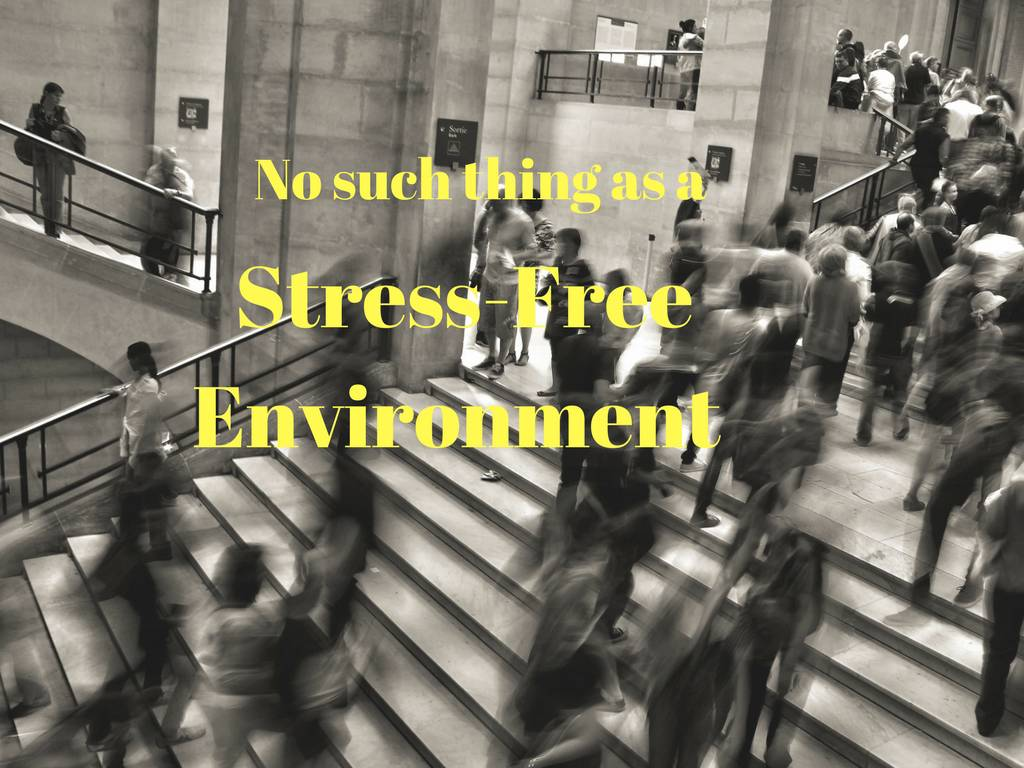"No Such thing as a ""Stress Free Environment"""